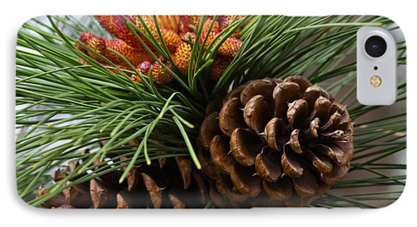 Ponderosa Pine Cones IPhone Case