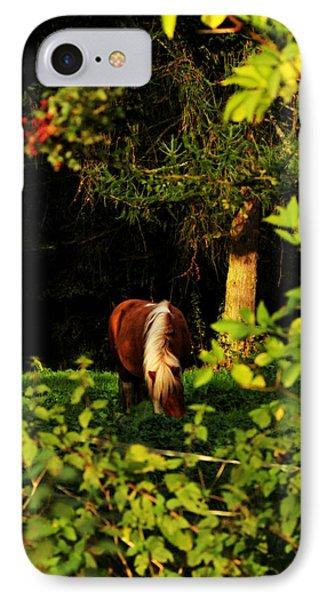Pony In Sun-dappled Meadow IPhone Case