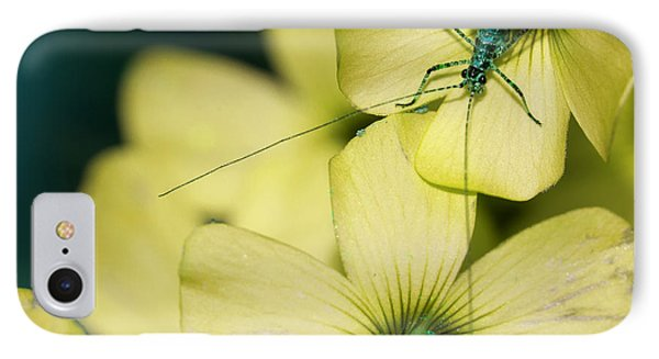 IPhone Case featuring the photograph Pop Macro No. 2 by Laura Melis