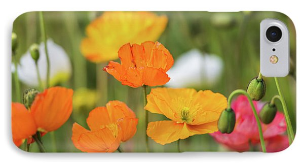 IPhone 7 Case featuring the photograph  Poppies 1 by Werner Padarin
