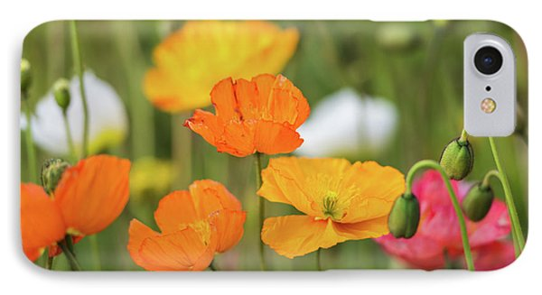 IPhone Case featuring the photograph  Poppies 1 by Werner Padarin