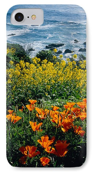 Poppies Along Coast Ca Usa IPhone Case by Panoramic Images