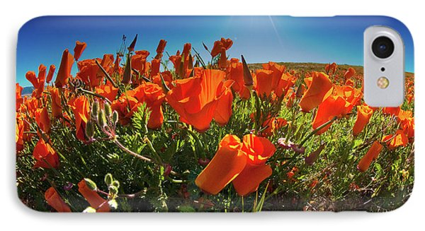 IPhone Case featuring the photograph Poppies by Harry Spitz