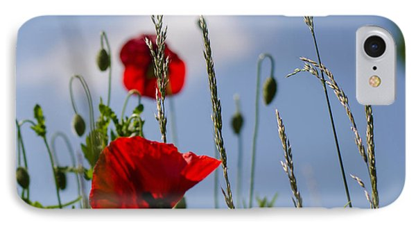 Poppies In The Skies IPhone Case