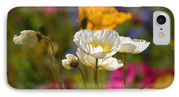 Poppies In The Spring IPhone Case by Deb Halloran