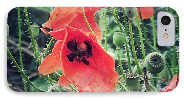 IPhone Case featuring the photograph Poppies by Karen Stahlros