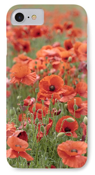 Poppies Phone Case by Phil Crean