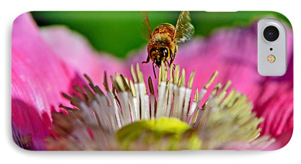 Poppy And A Bee 006 IPhone Case by George Bostian