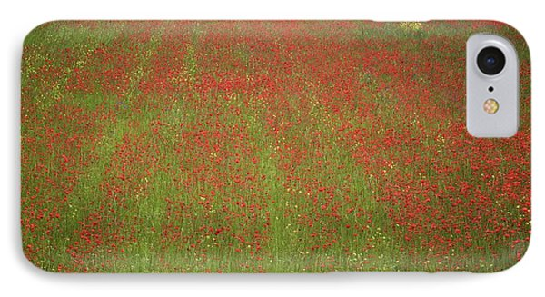 Poppy Field In Europe IPhone Case by Colleen Williams