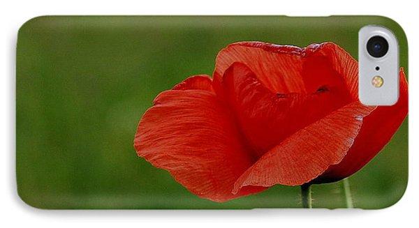 IPhone Case featuring the photograph Poppy by Marija Djedovic