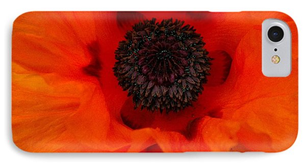 IPhone Case featuring the painting Poppy by Renate Nadi Wesley