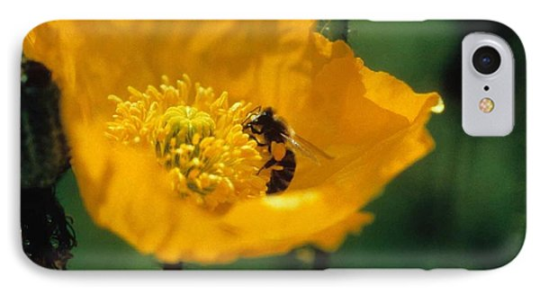 Poppy With Bee Friend Phone Case by Laurie Paci