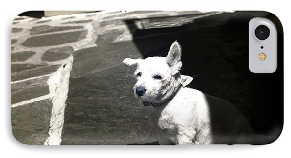 Porkchop In The Shadows Infrared IPhone Case