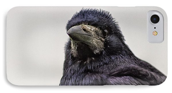 Portrait Of A Crow IPhone Case by Martin Newman