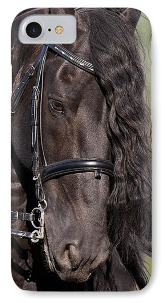 Portrait Of A Friesian IPhone Case by Wes and Dotty Weber