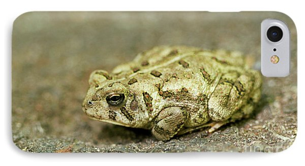 IPhone Case featuring the photograph Portrait Of A Grumpy Toad - Fowler's Toad by Jane Eleanor Nicholas