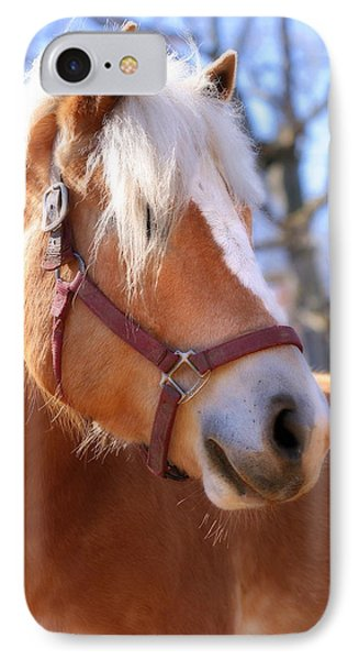 IPhone Case featuring the photograph Portrait Of A Haflinger - Niko by Angela Rath