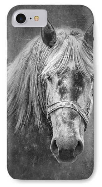 IPhone Case featuring the photograph Portrait Of A Horse by Tom Mc Nemar