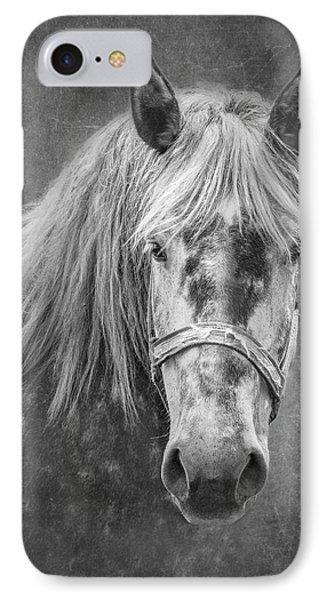 Portrait Of A Horse IPhone Case by Tom Mc Nemar