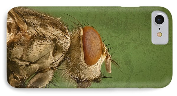 Portrait Of A Housefly IPhone Case