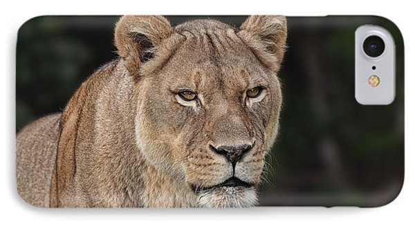 Portrait Of A Lioness II IPhone Case by Jim Fitzpatrick