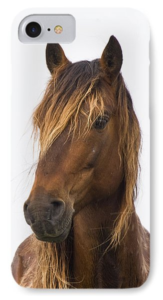 Portrait Of A Mustang IPhone Case by Bob Decker