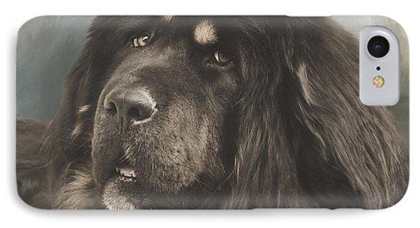 Portrait Of A Tibetan Mastiff IPhone Case