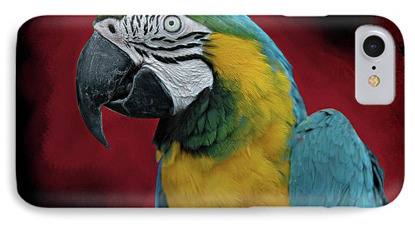 IPhone Case featuring the photograph Portrait Of A Parrot by Jeff Burgess