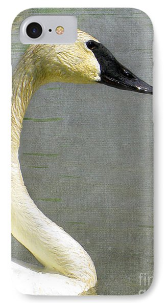 Portrait Of A Pond Swan IPhone Case by Nina Silver