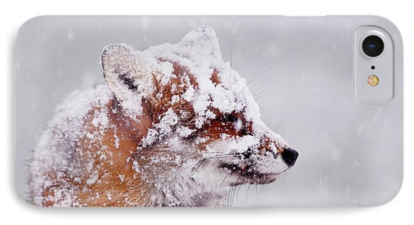 Portrait Of A Red Fox In A Blizzard IPhone Case by Roeselien Raimond