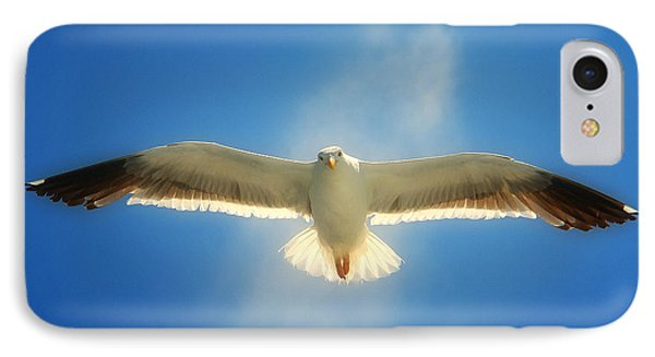 Portrait Of A Seagull IPhone Case by John A Rodriguez