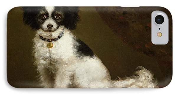 Portrait Of A Spaniel IPhone Case by Anonymous