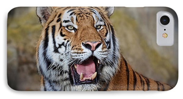 Portrait Of A Tiger II IPhone Case by Jim Fitzpatrick