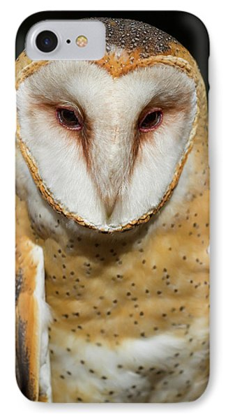 IPhone Case featuring the photograph Portrait Of Athena by Arthur Dodd