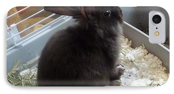 IPhone Case featuring the photograph Portrait Of Bunbunz by Denise Fulmer