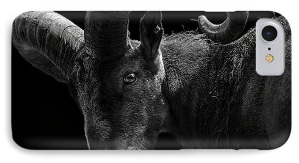 Portrait Of East Caucasian Tur In Black And White  IPhone Case