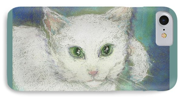 Portrait Of Misty IPhone Case by Denise Fulmer