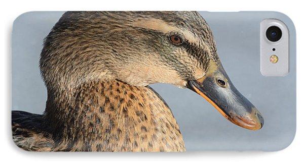 Portrait Of Rouen-mallard Mixed Breed Duck Hen Phone Case by Merrimon Crawford