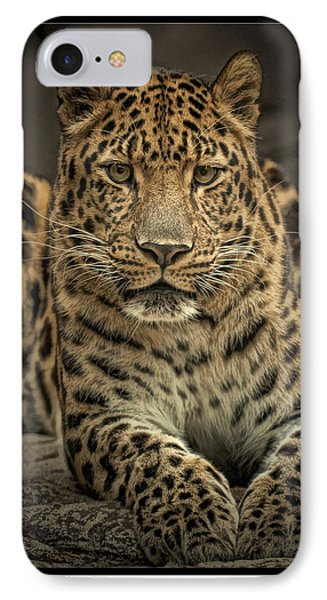 Poser IPhone Case by Cheri McEachin
