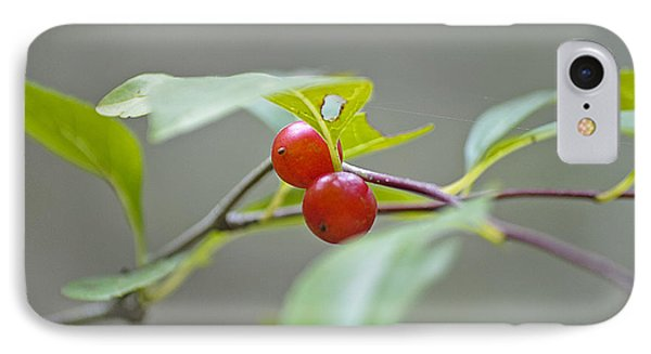 Possum Haw Berries Phone Case by Kenneth Albin