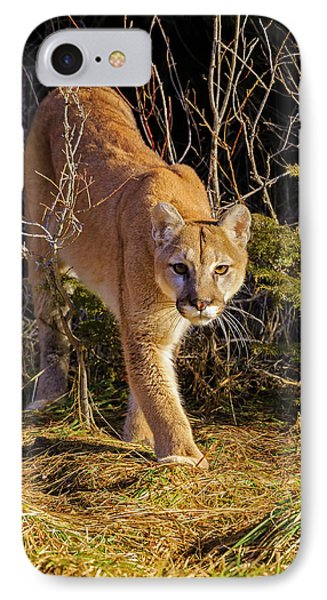 Power And Grace IPhone Case by Jack Bell
