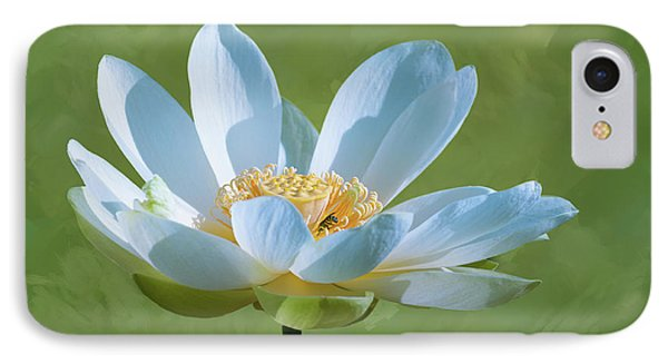 Power Of A Lotus IPhone Case by Carolyn Dalessandro