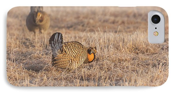 IPhone Case featuring the photograph Prairie Chicken 4-2015 by Thomas Young