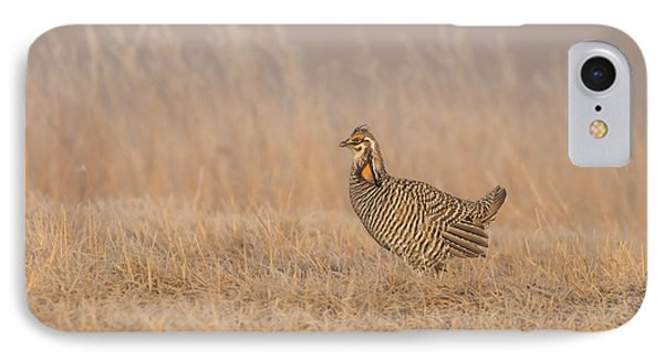 IPhone Case featuring the photograph Prairie Chicken 5-2015 by Thomas Young