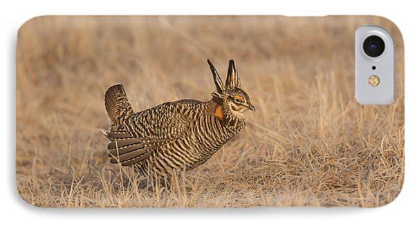 IPhone Case featuring the photograph Prairie Chicken 6-2015 by Thomas Young