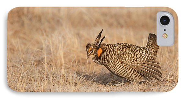 IPhone Case featuring the photograph Prairie Chicken 8-2015 by Thomas Young