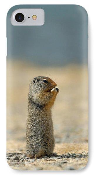 Prairie Dog IPhone Case by Sebastian Musial
