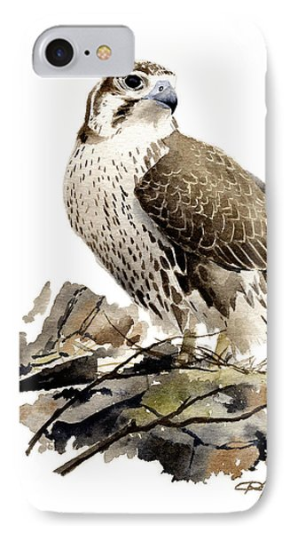 Prairie Falcon IPhone Case by David Rogers