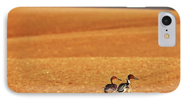 Prairie Storm And Ducks Canada IPhone Case