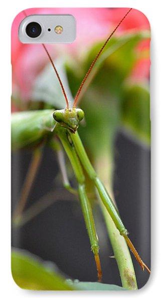 Praying Mantis 3 Phone Case by Noah Cole
